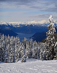 Cypress Mountain View - Photo by louder - Flickr User