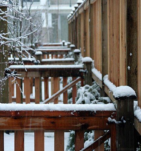 Langley Snow