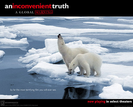 Polar Bears on Melting Ice - Movie Picture