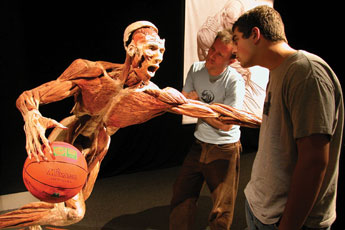 Body Worlds Exhibit in Vancouver